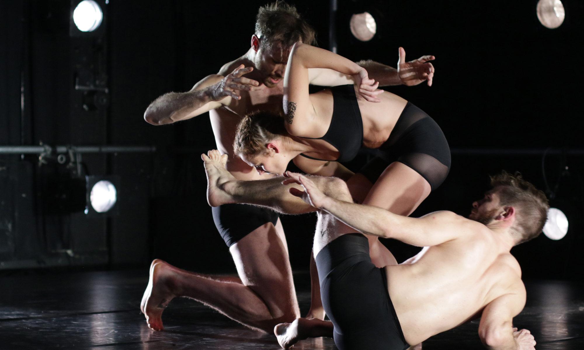 Tanzwerke Vanek PreussFoto Günter Krämmer